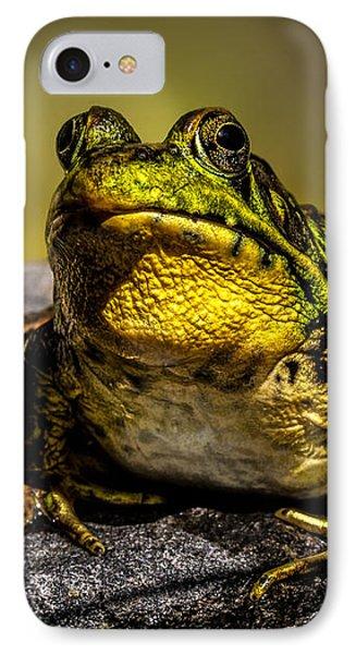 Bullfrog Watching Phone Case by Bob Orsillo