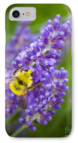 Bumble Bee And Lavender IPhone Case by Inge Johnsson