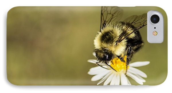 Bumble Bee Macro IPhone Case by Debbie Green