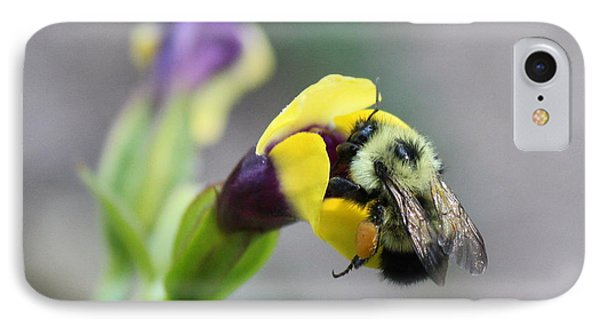 IPhone Case featuring the photograph Bumble Bee Making A Wish by Penny Meyers
