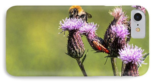 IPhone Case featuring the photograph Bumblebee On Thistl by Leif Sohlman