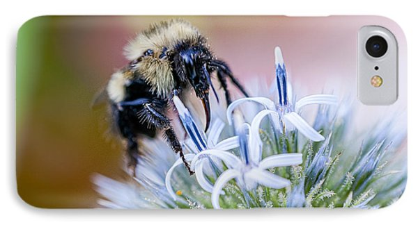 Bumblebee On Thistle Blossom IPhone Case by Marty Saccone