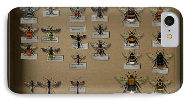 Bumblebees - Wild Bees - Wesps - Yellow Jackets - Ichneumon Flies - Apiformes Vespulas Hymenopteras  IPhone Case by Urft Valley Art