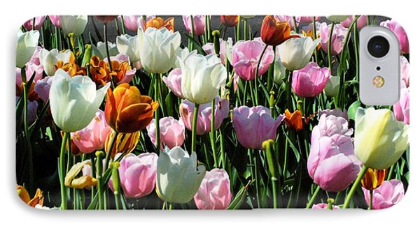 IPhone Case featuring the photograph Bunch-o-tulips by Mark McReynolds