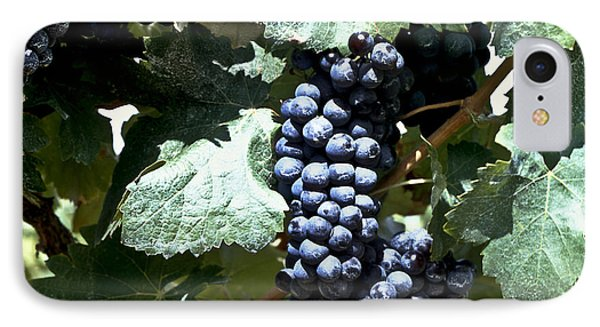 Bunch Of Grapes Phone Case by Heiko Koehrer-Wagner