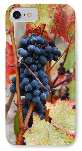 Bunch Of Grapes Phone Case by Jani Freimann
