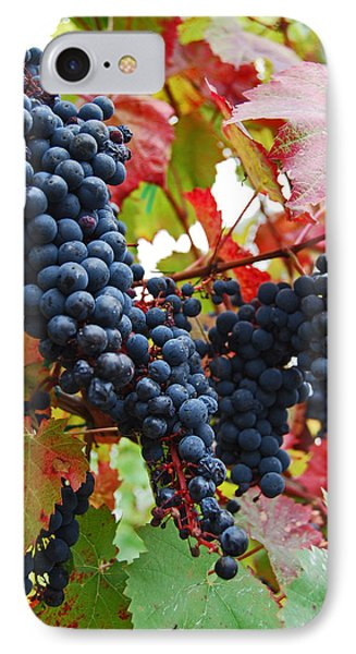 Bunches Of Grapes Phone Case by Jani Freimann