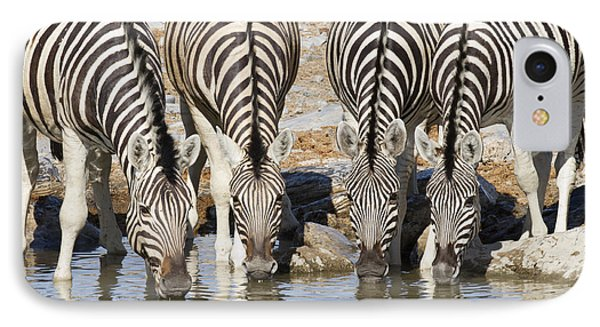 Burchells Zebras Drinking Etosha Np IPhone Case
