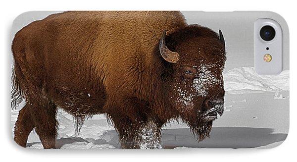 Burly Bison Phone Case by Priscilla Burgers
