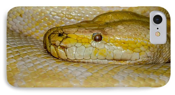 Burmese Python IPhone 7 Case by Ernie Echols