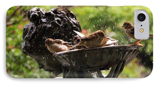Burnett Bird Bath IPhone Case by Jessica Jenney