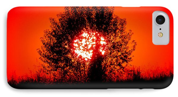 Burning Bush IPhone Case by Nick Kirby