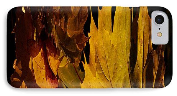 Burning Fall IPhone Case by Jouko Lehto
