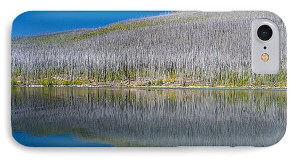 Burnt Forest Along Lake Mcdonald IPhone Case