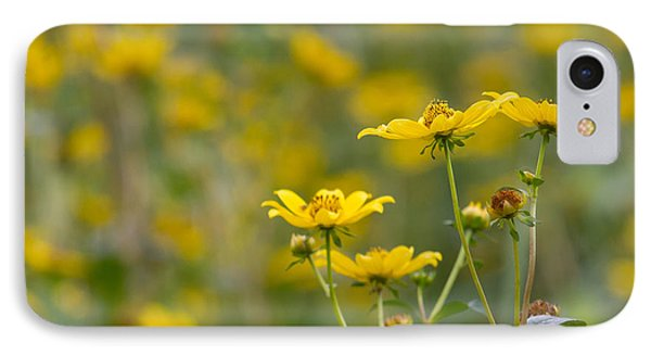 IPhone Case featuring the photograph Burrmarigold by Paul Rebmann