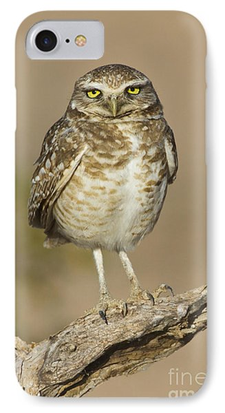 IPhone Case featuring the photograph Burrowing Owl by Bryan Keil
