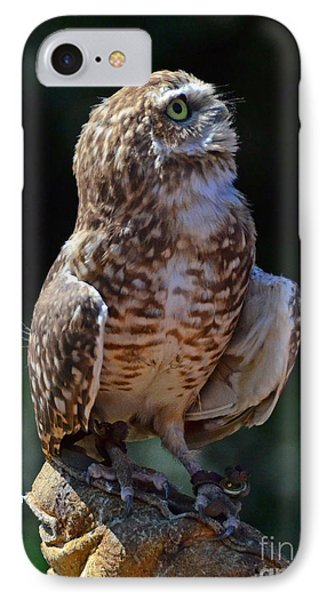 IPhone Case featuring the photograph Burrowing Owl by Debby Pueschel