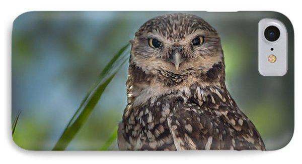 Burrowing Owl IPhone Case by Linda Villers
