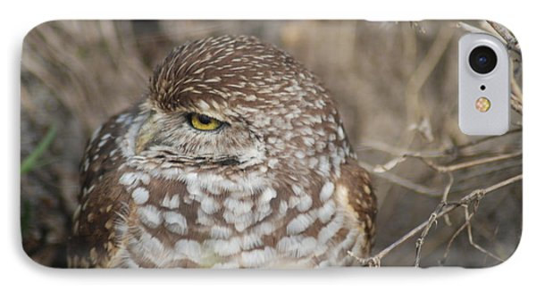 IPhone Case featuring the photograph Burrowing Owl by Oksana Semenchenko