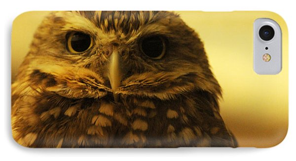 IPhone Case featuring the photograph Burrowing Owl by Olivia Hardwicke