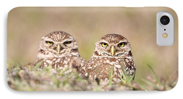 Burrowing Owl Pair IPhone Case by Brian Magnier