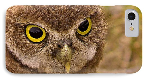IPhone Case featuring the photograph Burrowing Owl Portrait by Anne Rodkin