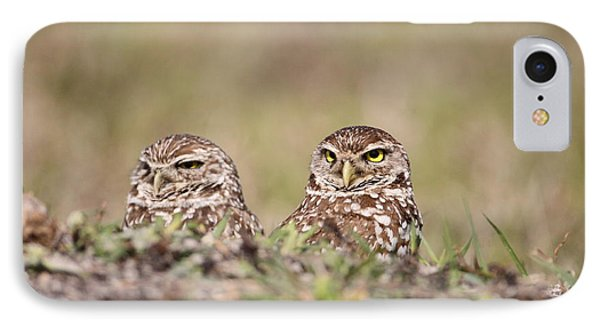 Burrowing Owls IPhone Case by Brian Magnier