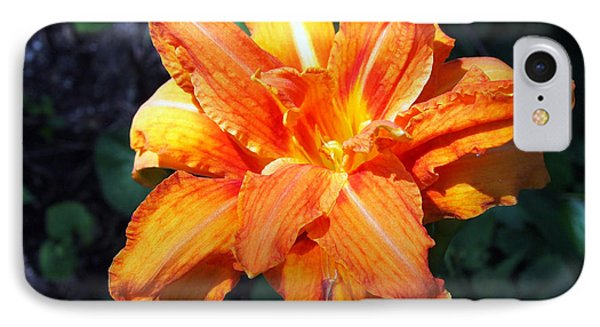 IPhone Case featuring the photograph Burst Of Orange In The Garden by Deborah Fay