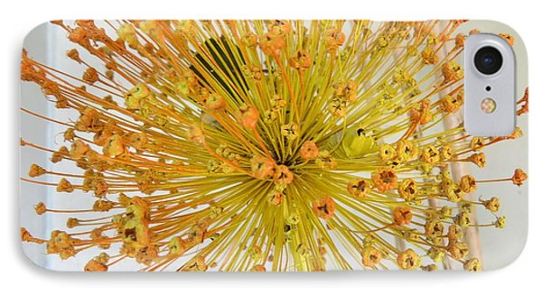 Burst Of Yellow IPhone Case by Jeanette Oberholtzer