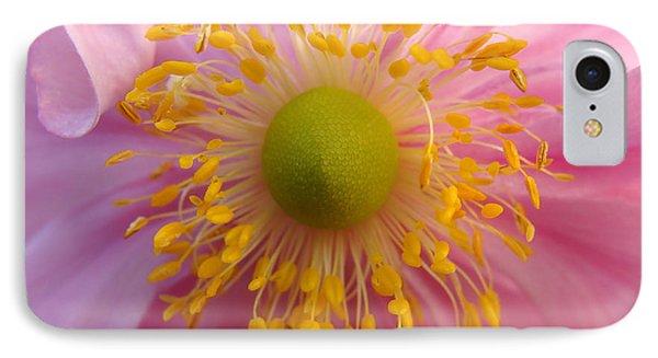Windflower IPhone Case by Cheryl Hoyle