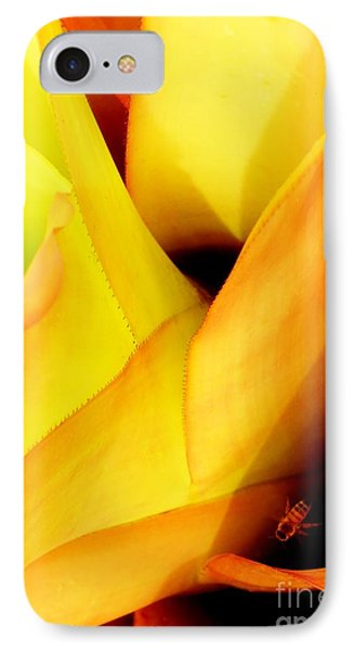 Busy Bee IPhone Case by Amar Sheow