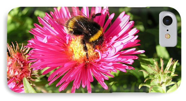 Busy Bee IPhone Case by Bev Conover