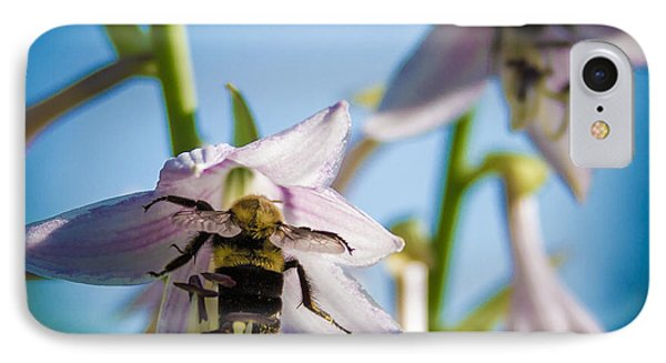 Busy Bee IPhone Case by Brian Caldwell