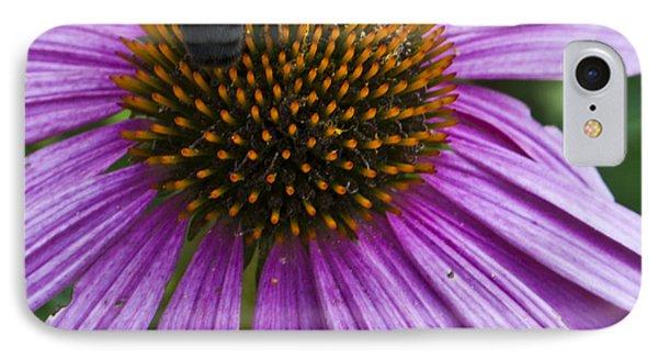 Busy Bee IPhone Case by Deborah Klubertanz