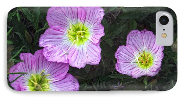 Buttercup Wildflowers - Pink Evening Primrose IPhone Case by Ella Kaye Dickey