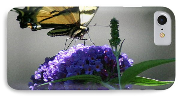 Butterflies Are Free IPhone Case by Debra Kaye McKrill