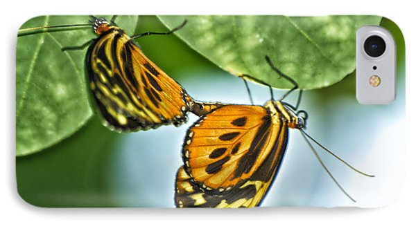 IPhone Case featuring the photograph Butterflies Mating by Thomas Woolworth