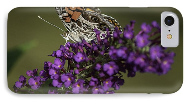Butterfly 0001 IPhone Case