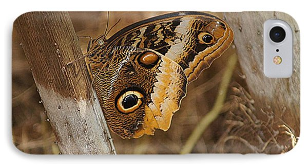 Butterfly 1 IPhone Case by Kathy Churchman
