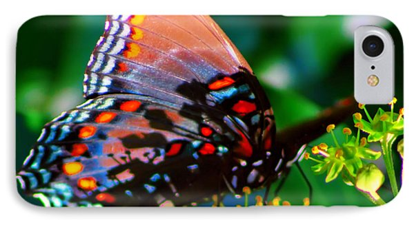 IPhone Case featuring the photograph Butterfly 2 by Kara  Stewart