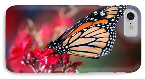 IPhone Case featuring the photograph Butterfly 2 by Leticia Latocki