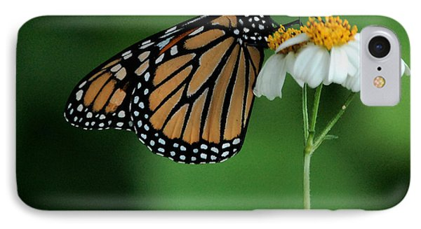 IPhone Case featuring the photograph Butterfly 3 by Leticia Latocki