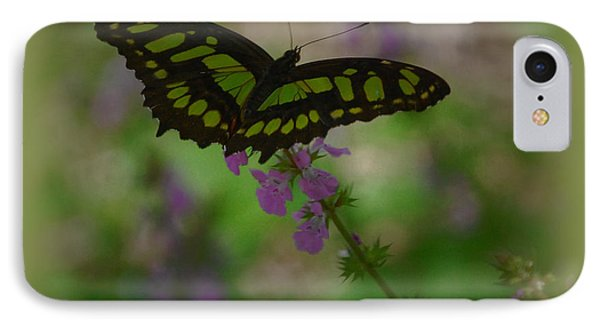 IPhone Case featuring the photograph Butterfly 4 by Leticia Latocki