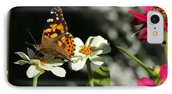 IPhone Case featuring the photograph Butterfly 4 by Steven Clipperton