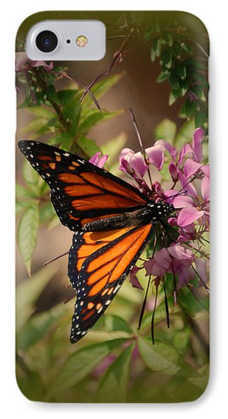 IPhone Case featuring the photograph Butterfly 5 by Leticia Latocki