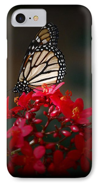 IPhone Case featuring the photograph Butterfly 6 by Leticia Latocki
