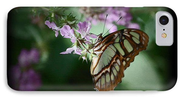 IPhone Case featuring the photograph Butterfly 7 by Leticia Latocki