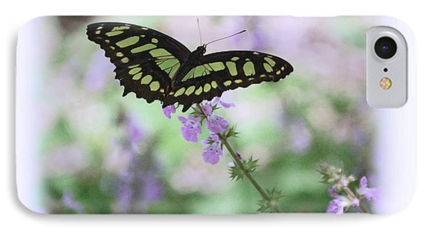 IPhone Case featuring the photograph Butterfly 8 by Leticia Latocki