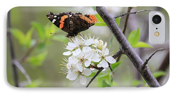 IPhone Case featuring the photograph Butterfly And Apple Blossoms by Penny Meyers