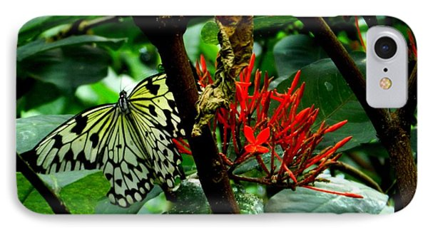 IPhone Case featuring the photograph Butterfly And Blossom by Karen Molenaar Terrell